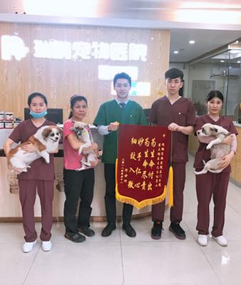 瑞鹏新皇冠投注网东门锦旗故事